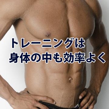 ネオエンザイム トレーニングは身体の中も効率よく